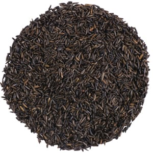 Image result for WBU Nyjer Seed
