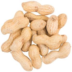 Peanuts In-The-Shell, Straight Seed, Bird Food, Wild Birds Unlimited, WBU