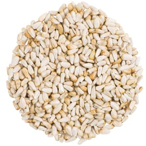 Safflower, Straight Seed, Bird Food, Wild Birds Unlimited, WBU