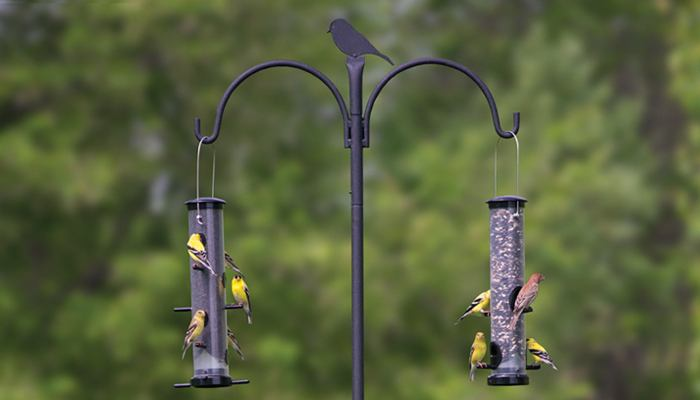 Hanging Advanced Pole System, APS, Wild Birds Unlimited, WBU