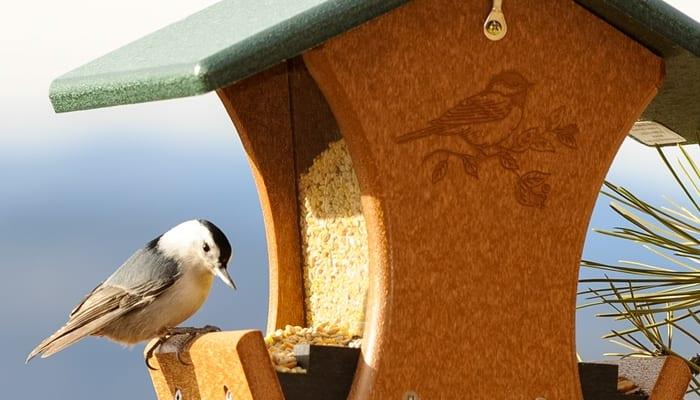 No Mess Blends, Bird Food, Wild Birds Unlimited, WBU