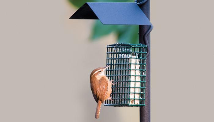 Simply Suet, Bird Food, Wild Birds Unlimited, WBU