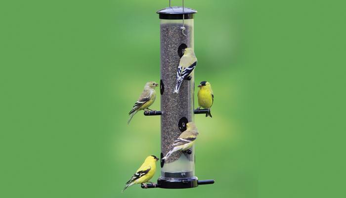 finch bottoms droll up lovers yankees bl product bird feeder