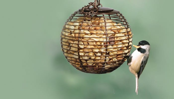 Peanut Ball, Bird Feeder, Wild Birds Unlimited, WBU