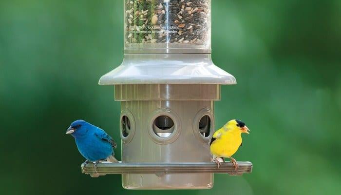 eliminator bird feeder wild birds unlimited wbu - Squirrel Proof Bird Feeders