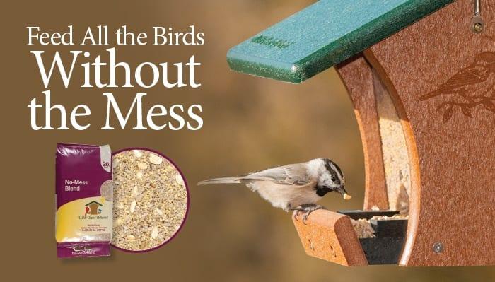 Home | Wild Birds Unlimited