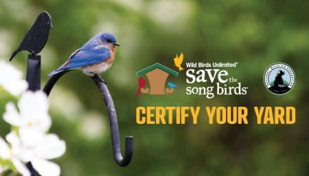 Certify Your Yard